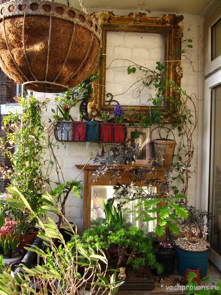cvety-na-balkone-provans