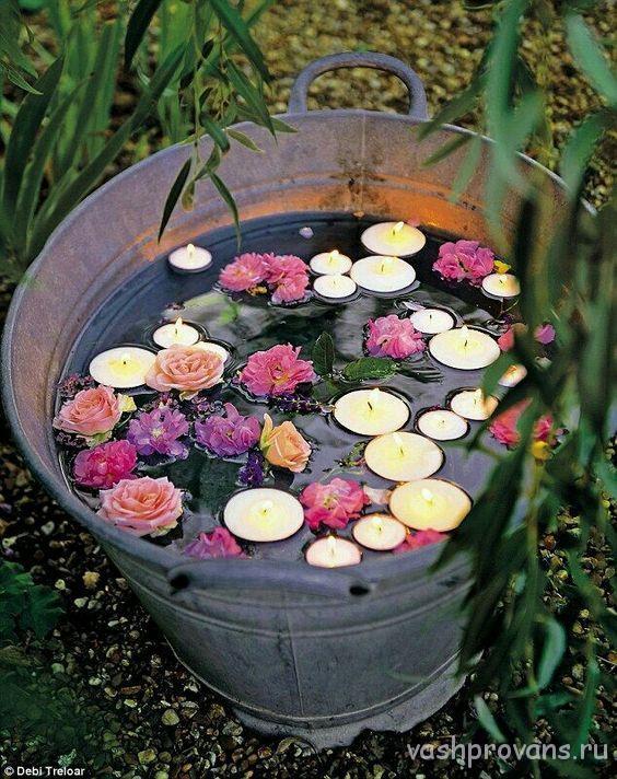 cvety-provans-v-vedre