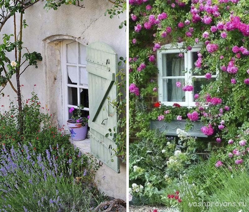 sad-provans-cvety-okno